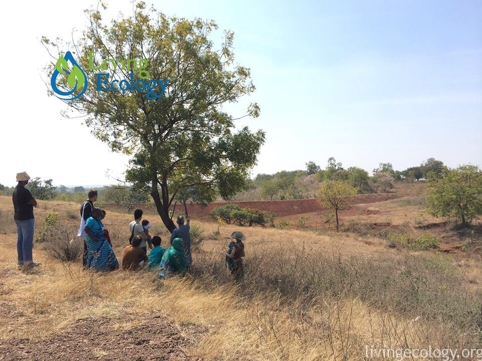 Permaculture Internship In India Living Ecology