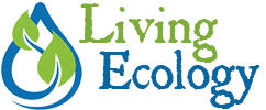 Living Ecology